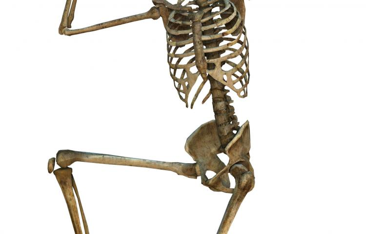 3D digital render of an exercising old human skeleton isolated on white background